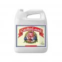 Advanced Nutrients CarboLoad Liquid 5 l, фото 1