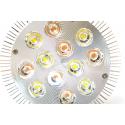 Лампа для растений LED 36 Ватт Е27 (Полный спектр x 2), фото 1