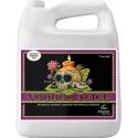 Стимулятор корнеобразования Advanced Nutrients Voodoo Juice 5л, фото 1